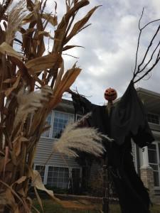 Scarecrow2015